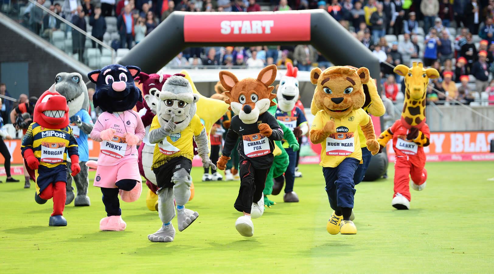 Support Hugh and Carmen Bear in charity mascot race